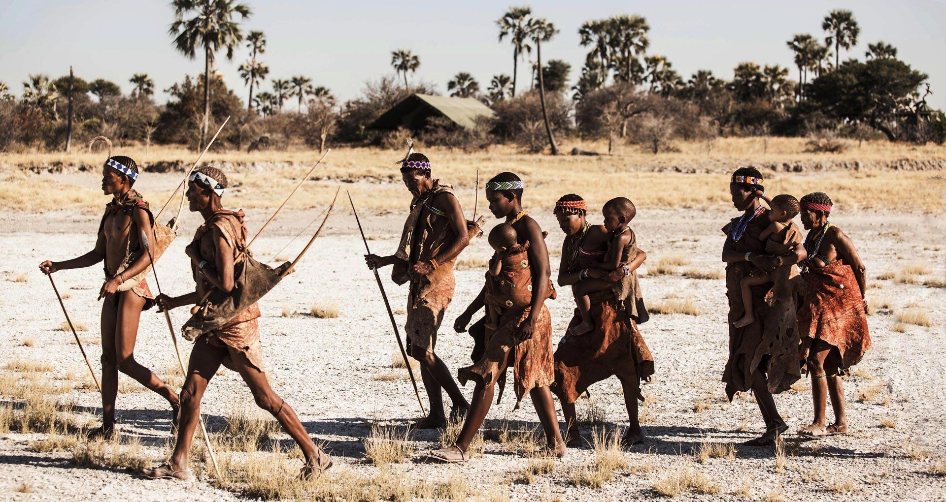 Highlights from Botsuana